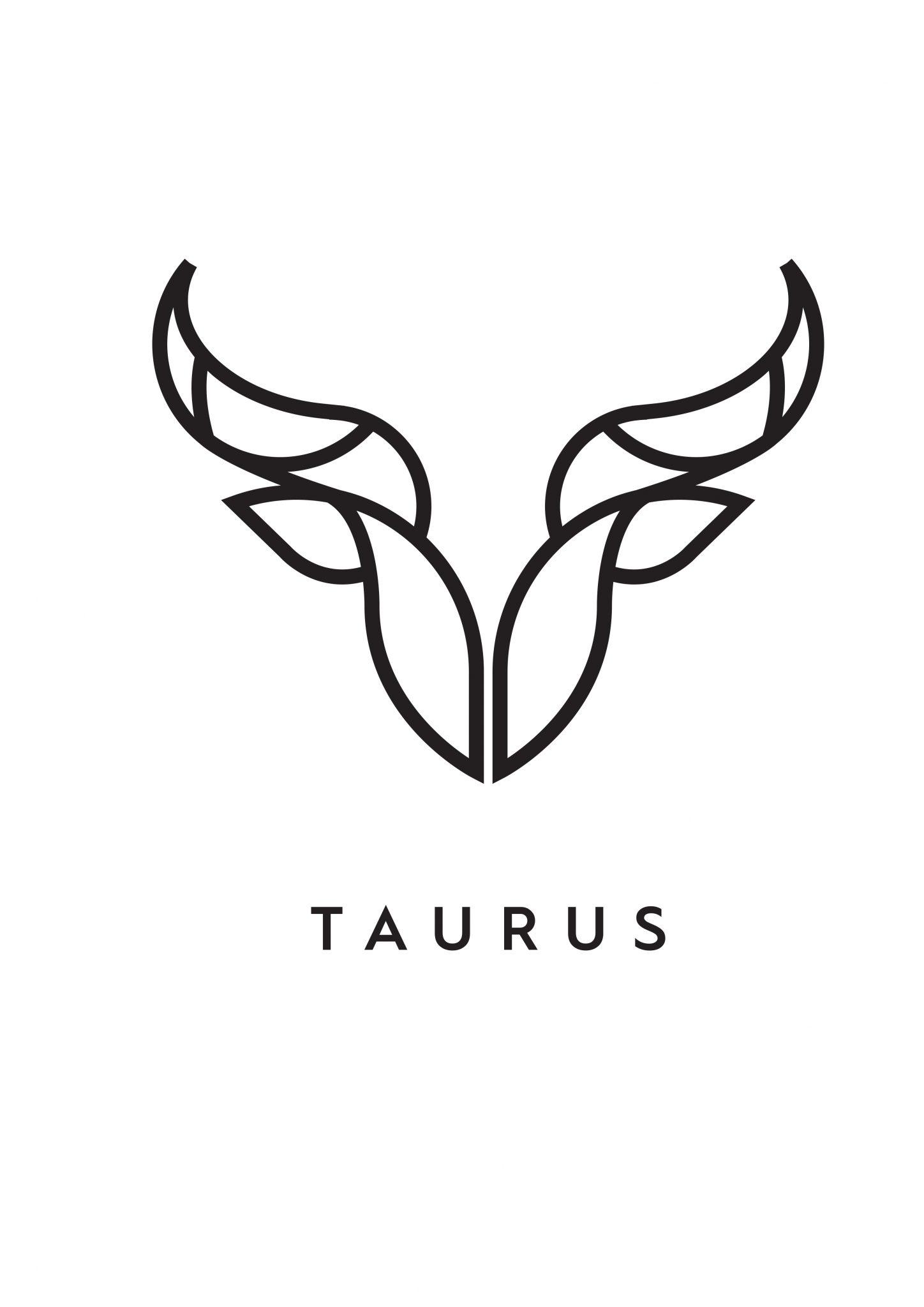 Olariu Alin (Taurus)